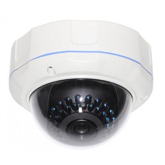 Camera IP Dome hình cầu trong nhà IR 30 leds